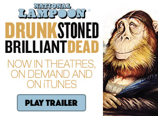 Drunk Stoned Brilliant Dead
