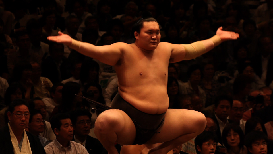 A sumo wrestler in Alex Gibneys Pure Corruption, part of the screen adaptation of iFreakonomics/i.